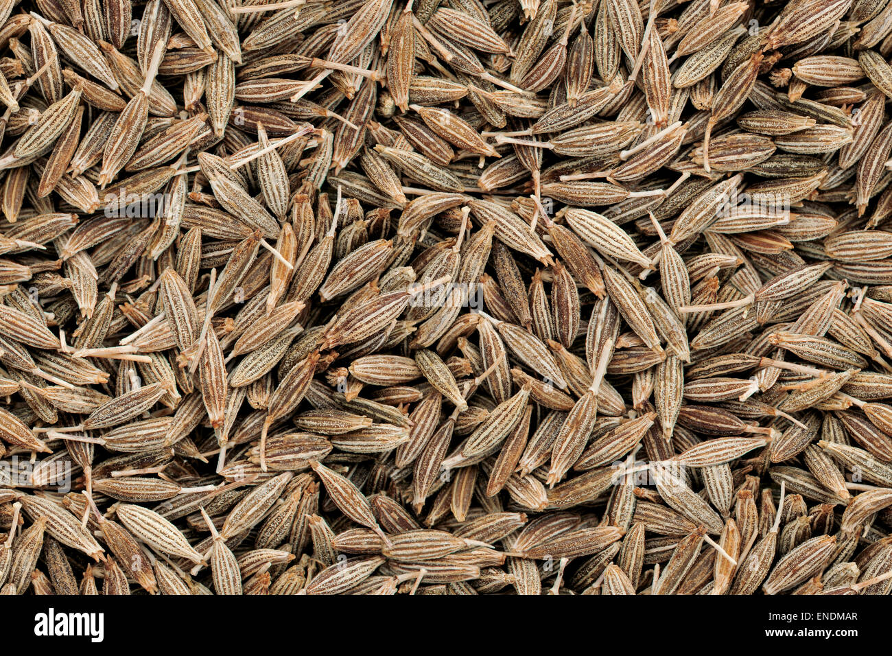 Les graines de cumin Seamless Texture Image modèle. Gros plan d'épices indiennes avec arrière Photo Stock