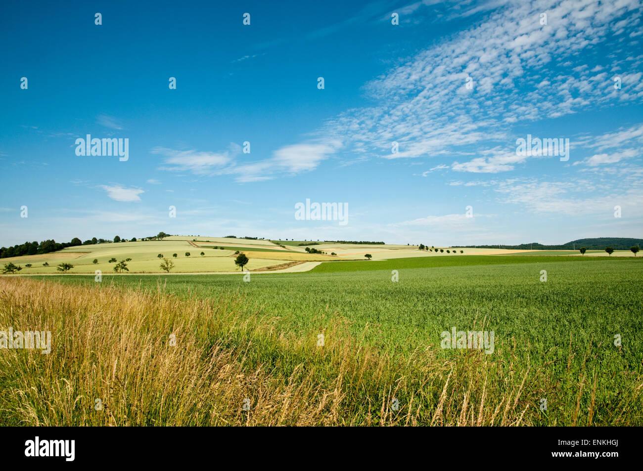 Suède Paysage, Basse-Saxe, Allemagne Banque D'Images