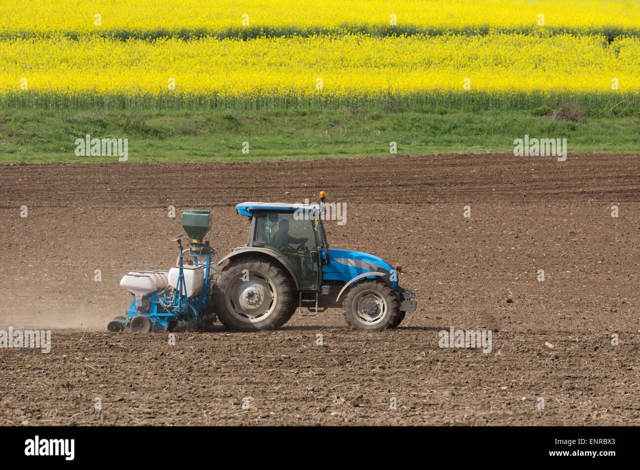 L'agriculture un champ avec un tracteur Photo Stock