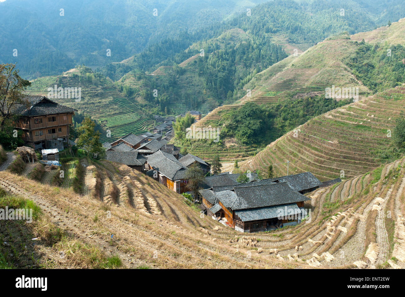 Longsheng rizières en terrasses, village Zhongliu, Ping'an, près de Guilin, dans la région autonome Photo Stock