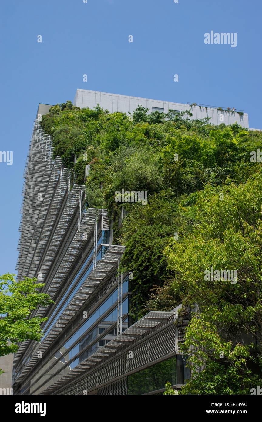 ACROS Fukuoka, Fukuoka, Japon. L'architecture écologique, en utilisant l'étape vert jardin extérieur. Photo Stock