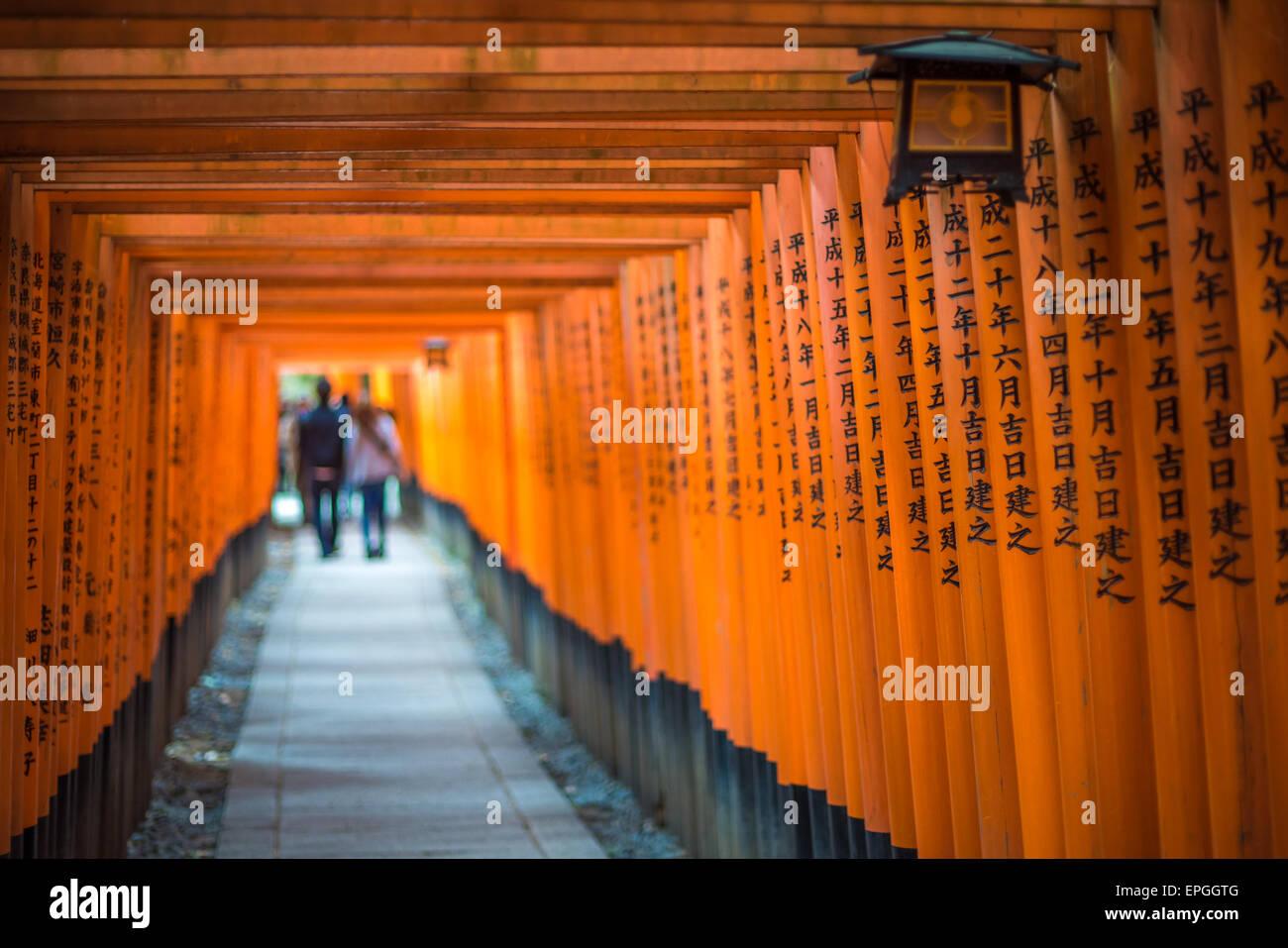 Red Torii de Fushimi Inari Shrine, Kyoto, Japon Banque D'Images