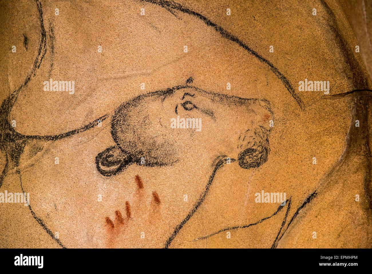 Réplique de peintures rupestres préhistoriques de la grotte Chauvet, Grotte Chauvet-Pont-d'Arc, Ardèche, France, montrant disparue lion des cavernes Banque D'Images
