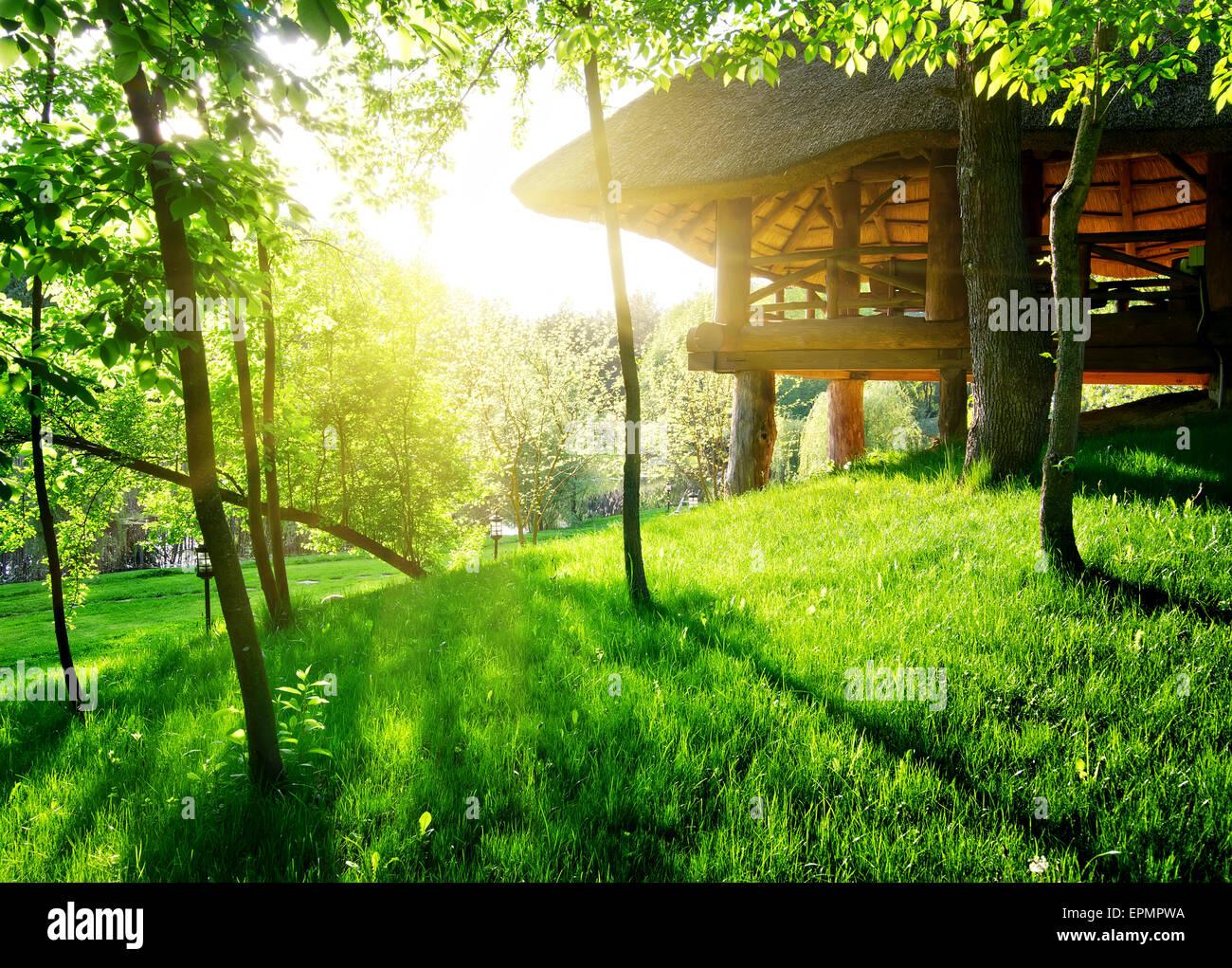 Gazebo parmi le vert des arbres dans journée ensoleillée Photo Stock