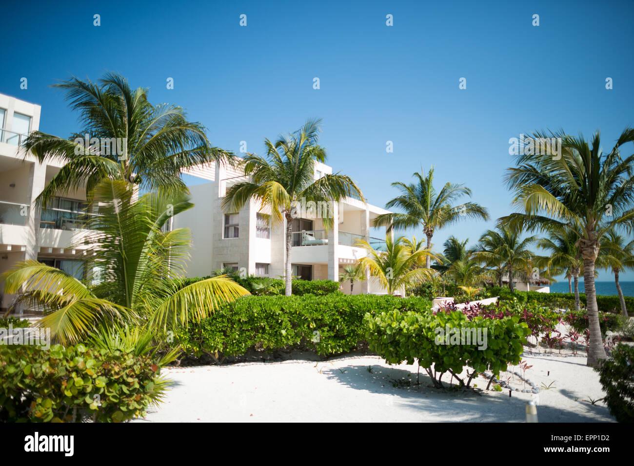 Le bien-aimé, de l'hôtel Playa Mujeres, Mexique, est situé juste au nord de Cancun. C'est Photo Stock