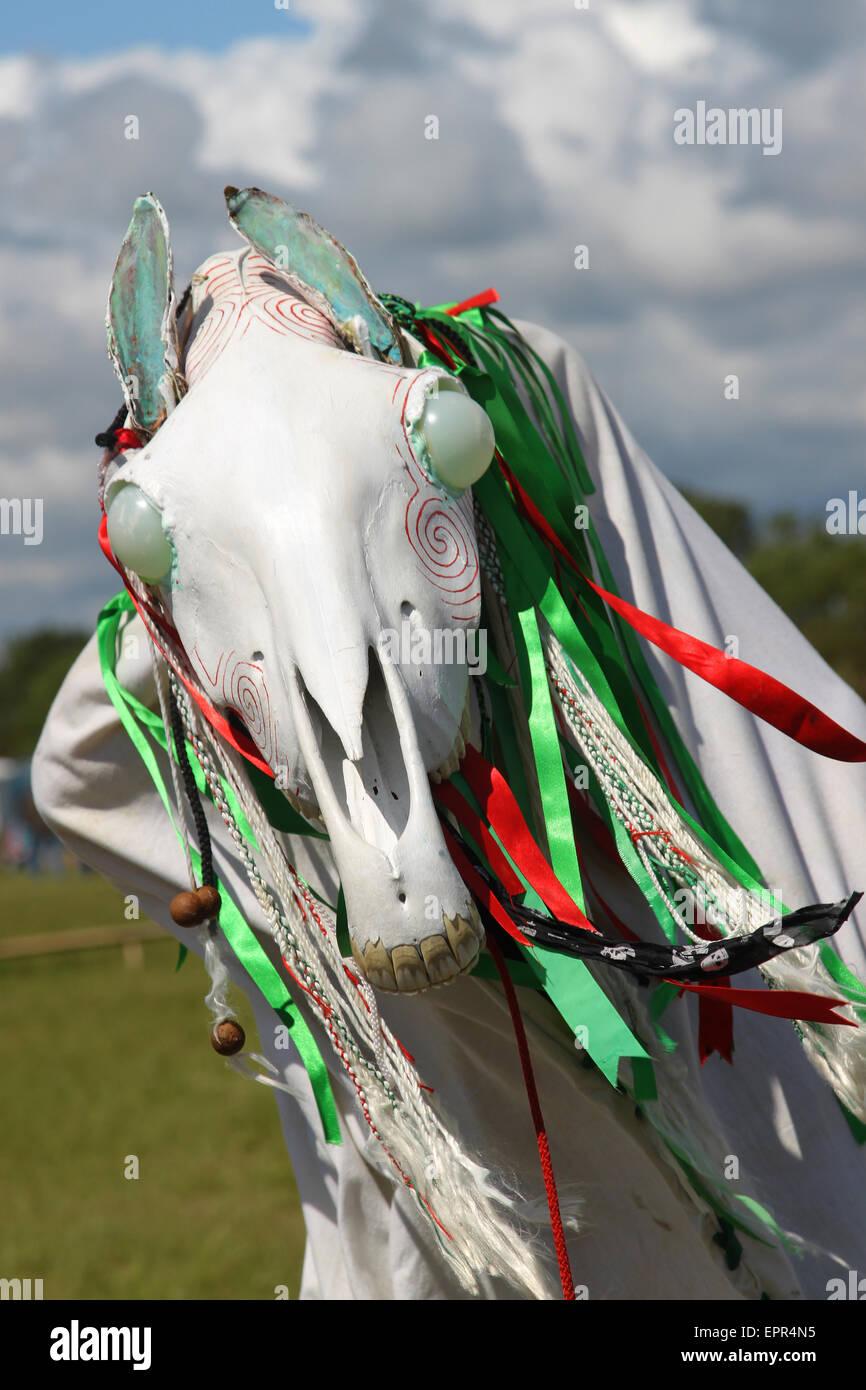 National Eisteddfod, Vale of Glamorgan, Mari Llwyd Photo Stock