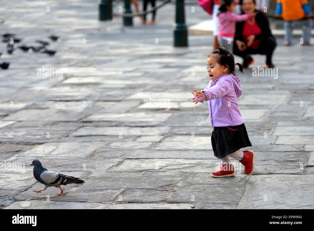 Fille chassant un pigeon sur un carré, Lima, Pérou Banque D'Images