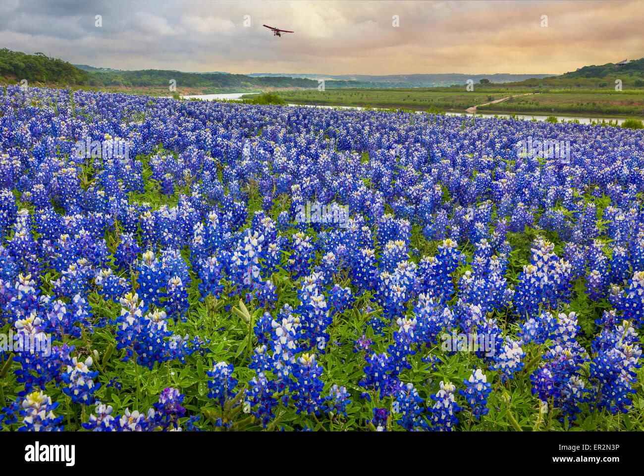La Turquie Bend Recreation Area, Texas. La Turquie est sur la rivière Colorado, dans le sud-est de Burnet Comté. Photo Stock