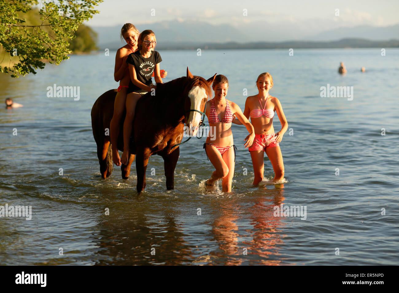 Quatre filles avec un cheval dans le lac de Starnberg, AMMERLAND, Munsing, Haute-Bavière, Allemagne Photo Stock