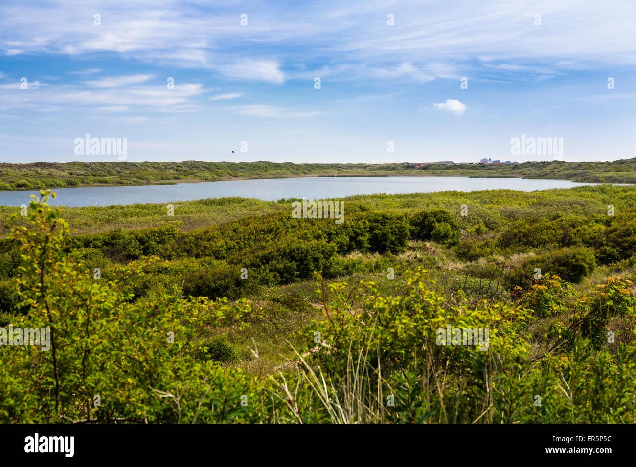 L'île de Juist, lac, Marteau, Nationalpark, Mer du Nord, îles de la Frise orientale, Frise orientale, Photo Stock