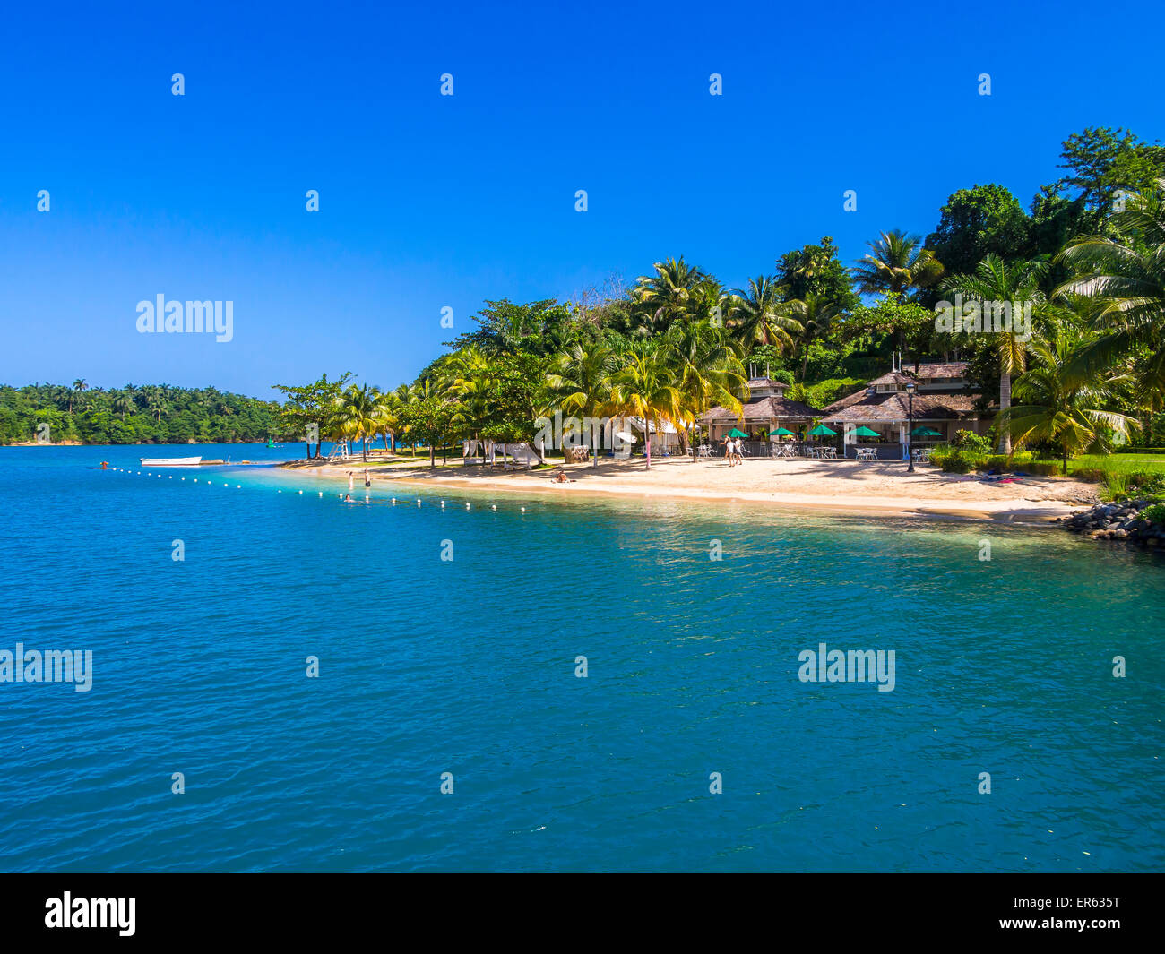 Plage des Caraïbes avec des palmiers, Erol Flynn Marina, Port Antonio, région de Portland, Grandes Antilles, Jamaïque Banque D'Images