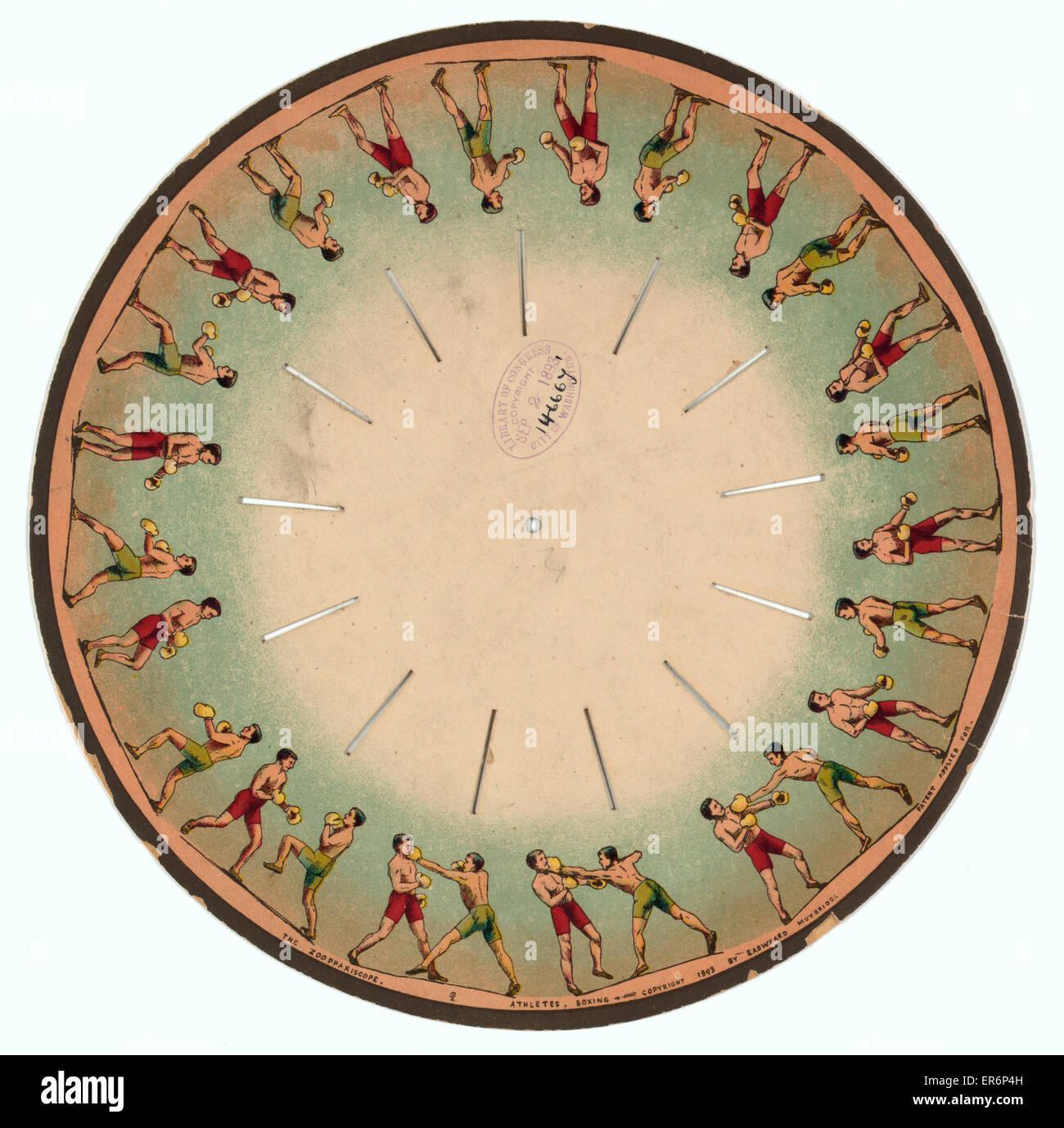 Le zoopraxiscope - Athlètes - Boxe. Les images sur un disque qui lorsqu'spun donne l'illusion de deux Photo Stock