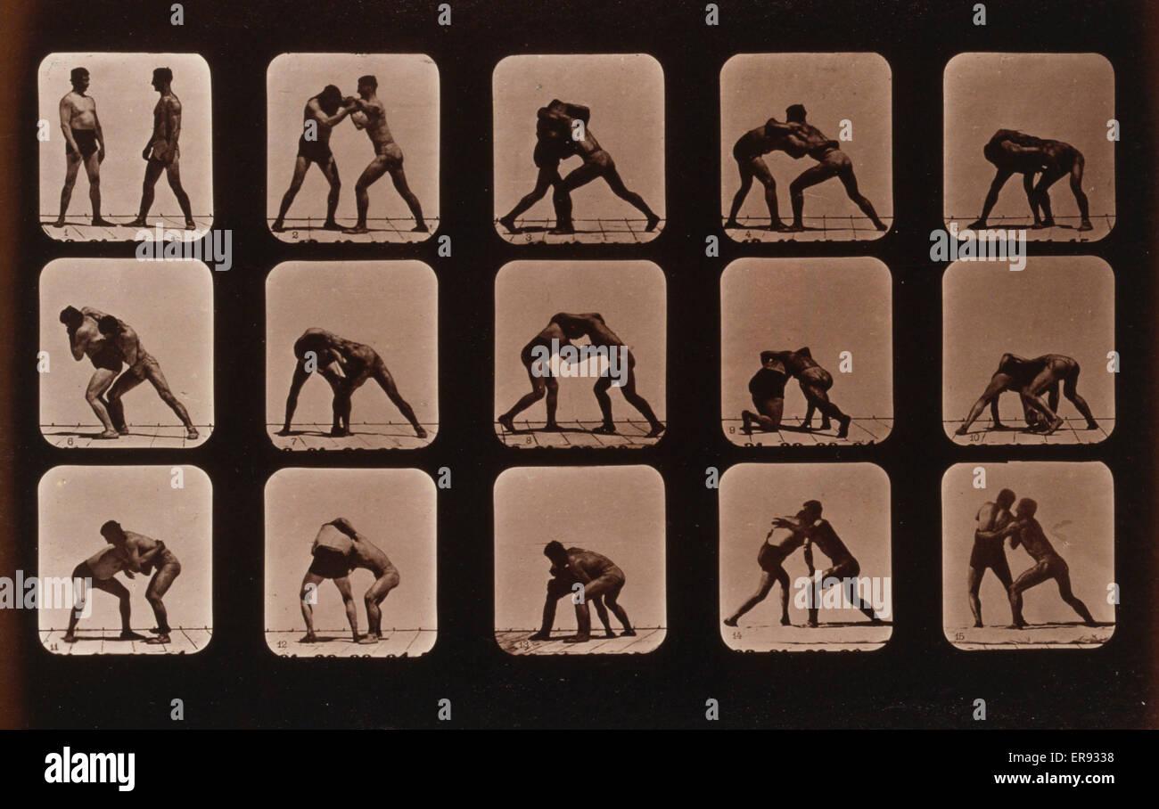 Les athlètes. La lutte. La photographie montre quinze images consécutives de deux hommes la lutte. Date Photo Stock