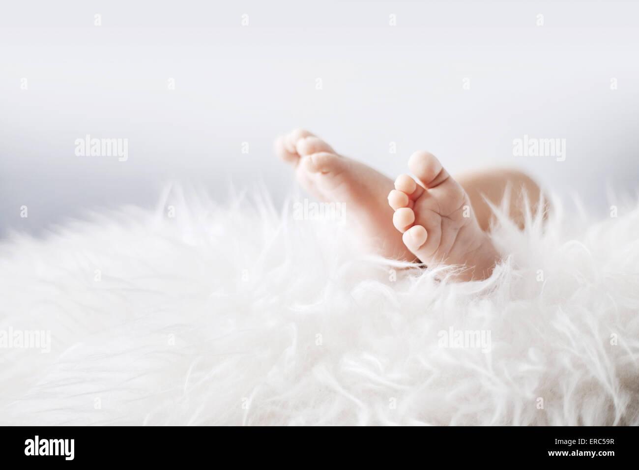 Les petits pieds d'un bébé nouveau-né Photo Stock