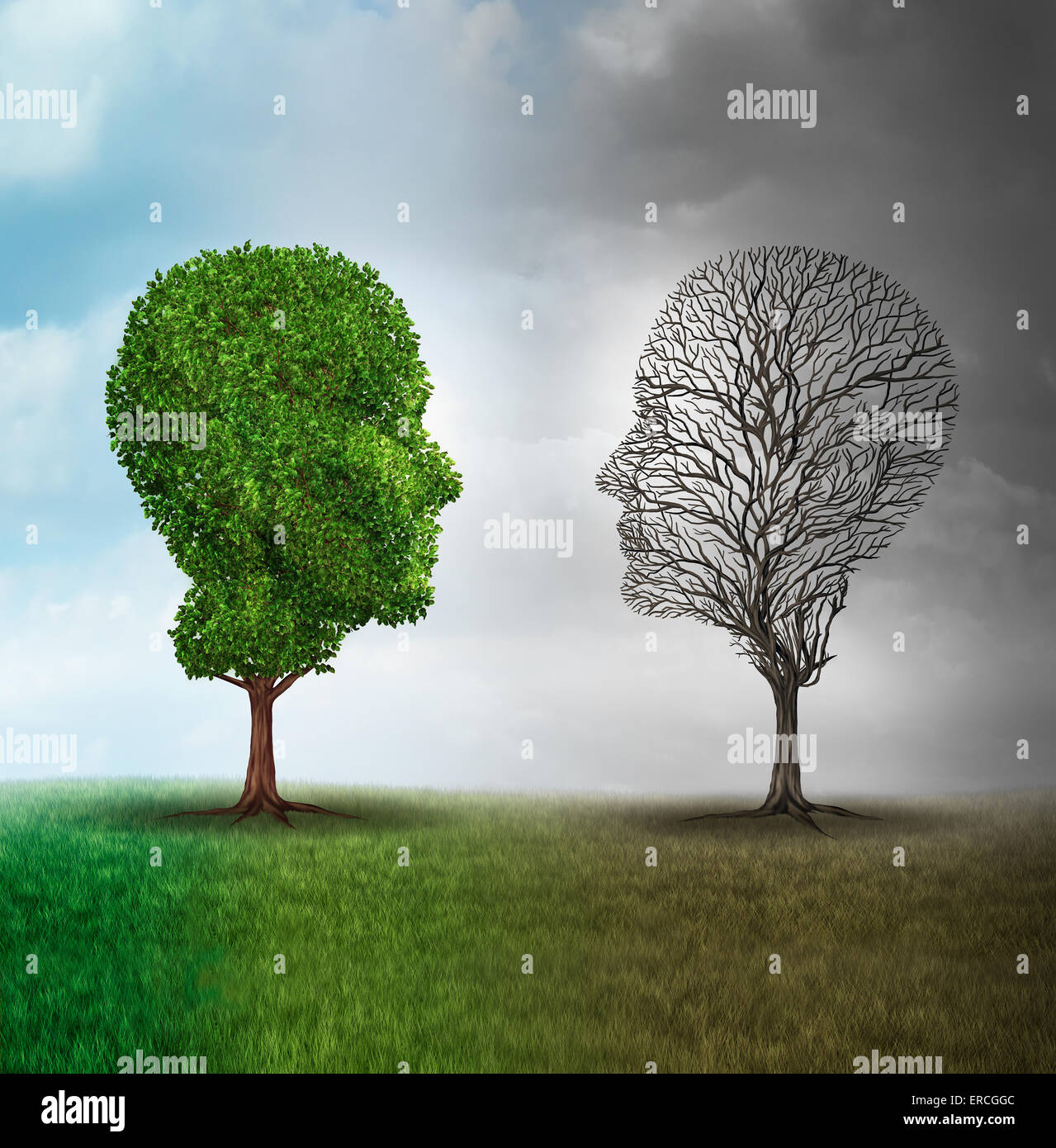 Les droits de l'humeur et troubles de l'émotion comme concept un arbre en forme de deux visages humains Photo Stock