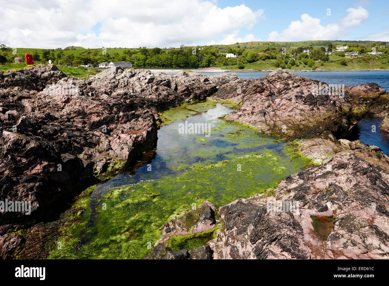 Grande piscine dans la roche dacite rose des pierres à Limerick Cushendall point le comté d'Antrim Photo Stock