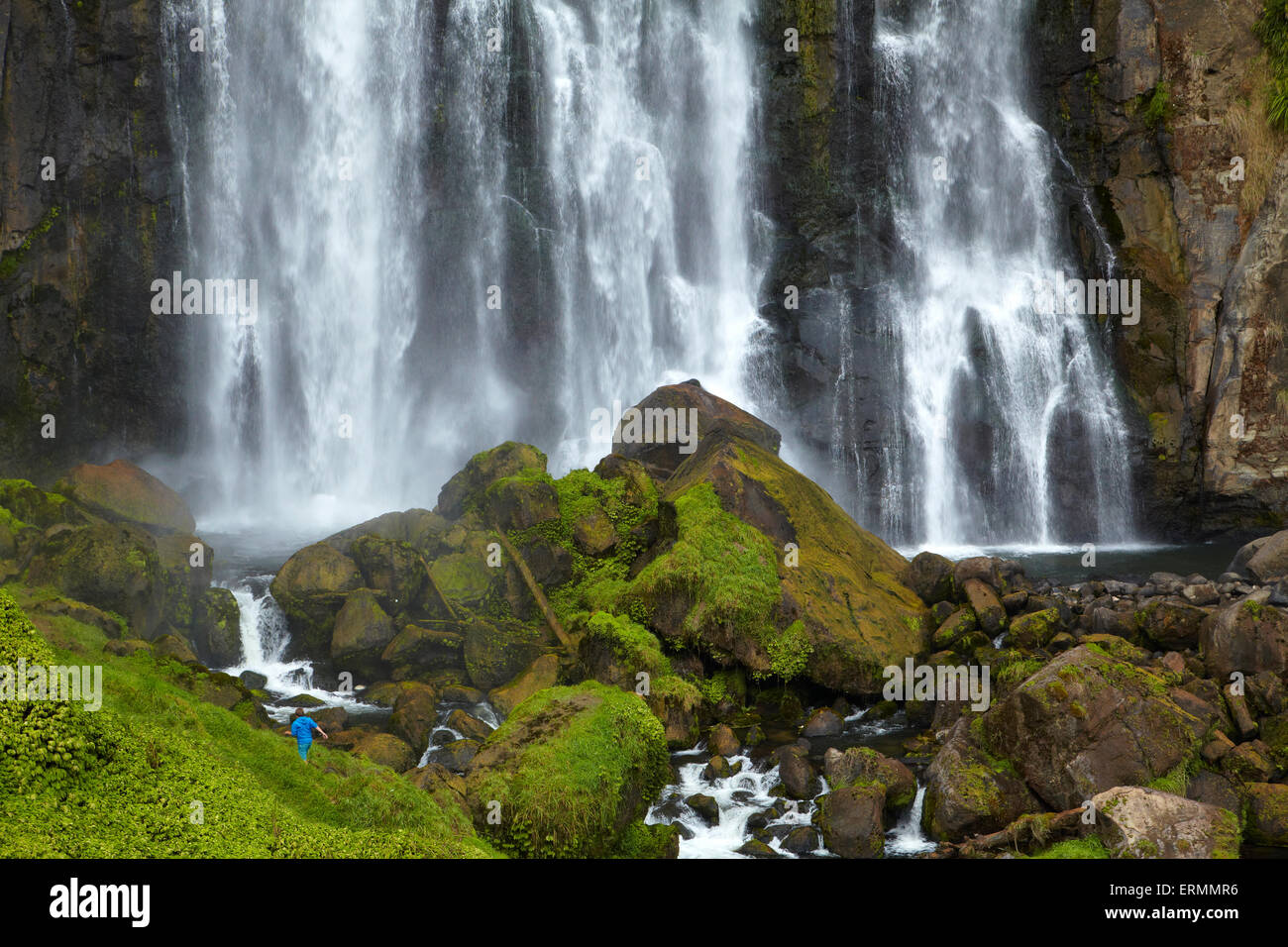 Marokopa Falls, District de Waitomo, Waikato, Nouvelle-Zélande, île du Nord Photo Stock