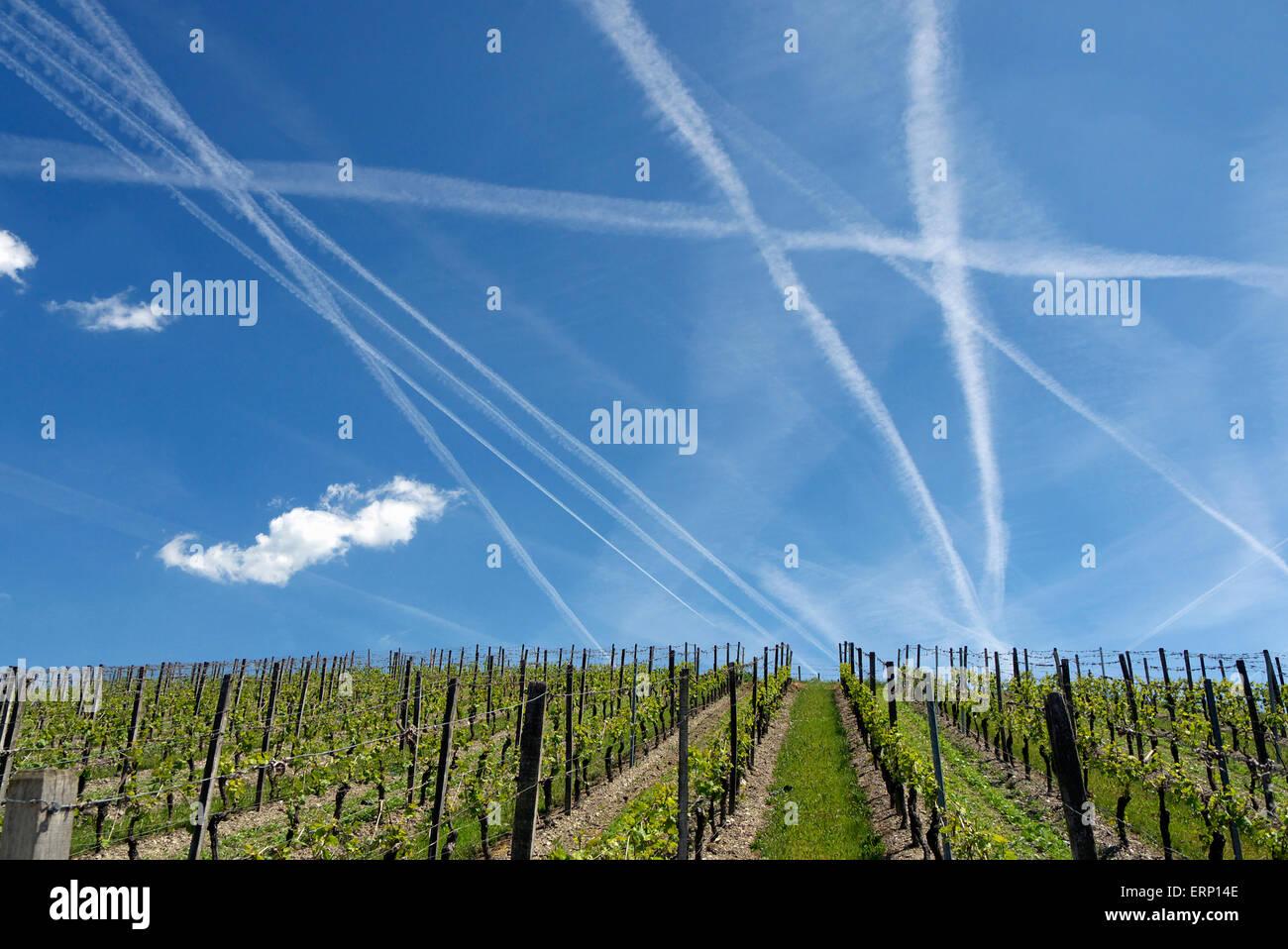 Traînées de condensation sur la région viticole de Rheingau Photo Stock
