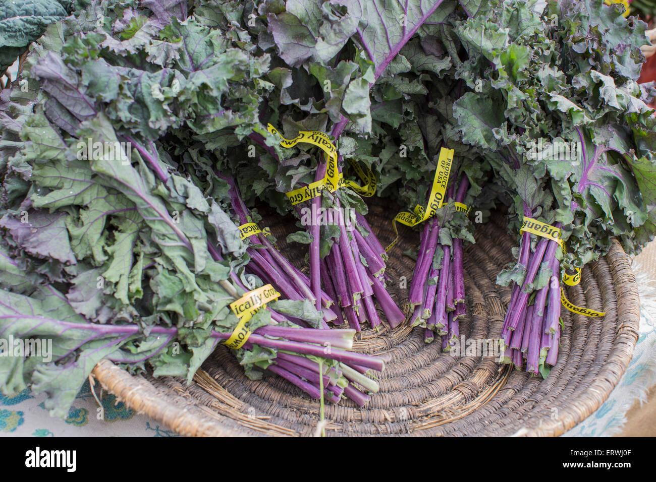 Panier de produits frais, cultivés organiquement à kale violet Ferry Building farmer's market, San Photo Stock