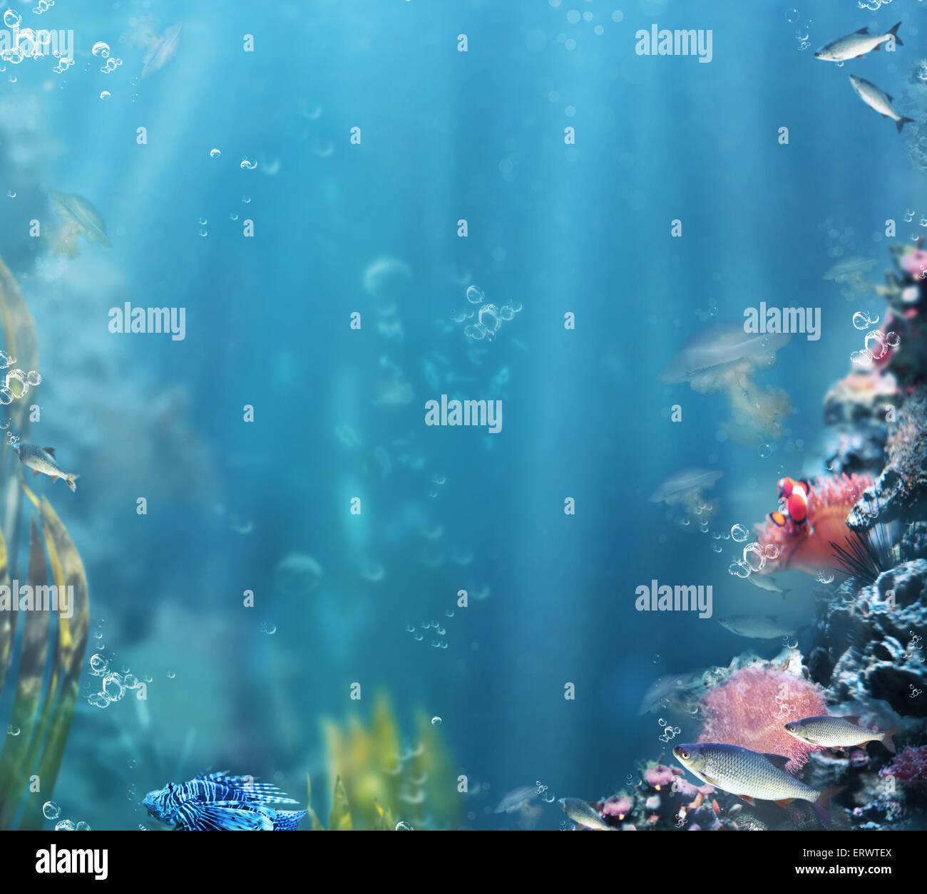 Marine. La vie de la mer. Aquarium avec des poissons et coraux Photo Stock