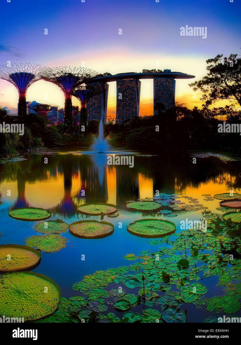 Singapour - JUIN 07: Soirée voir d'eau étang, et Marina Bay Sands dans les jardins de la baie Photo Stock
