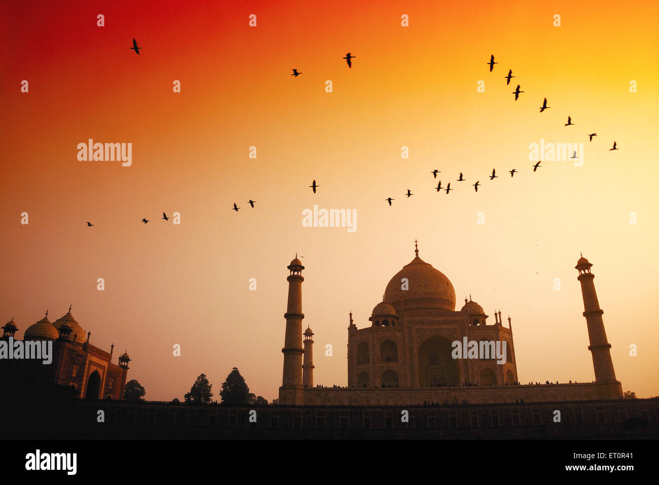 Birds flying in sky plus de Taj Mahal au coucher du soleil ; Agra Uttar Pradesh ; Inde ; Photo Stock