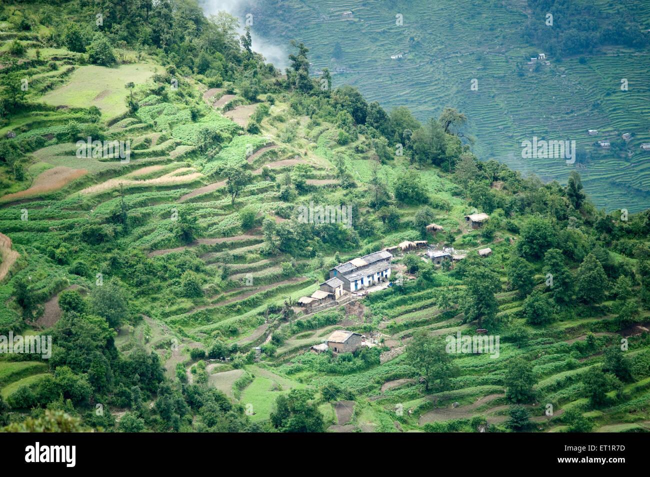 Petit village et terrasse l'agriculture en himalaya d'Uttarakhand en Inde Asie Photo Stock
