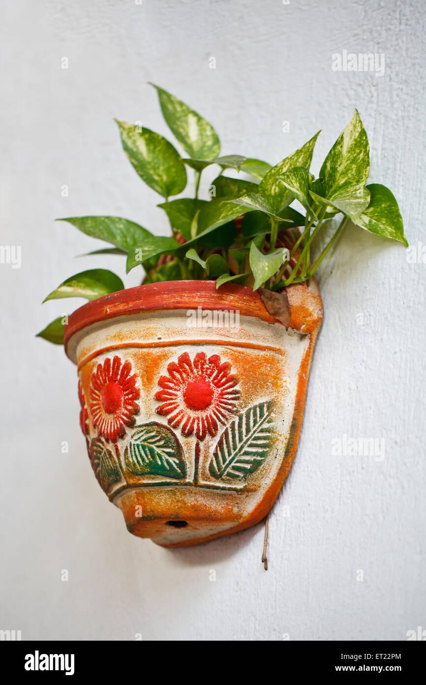 Clay Pot De Fleurs Accroche Sur Un Mur Blanc Banque D Images Photo
