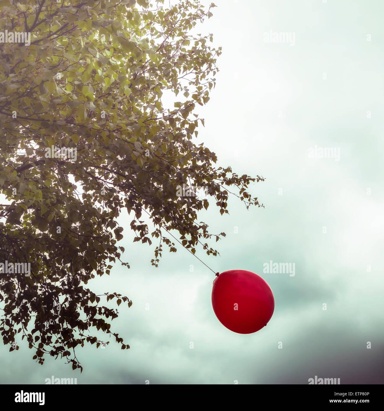 Un ballon rouge accroché à un arbre Photo Stock