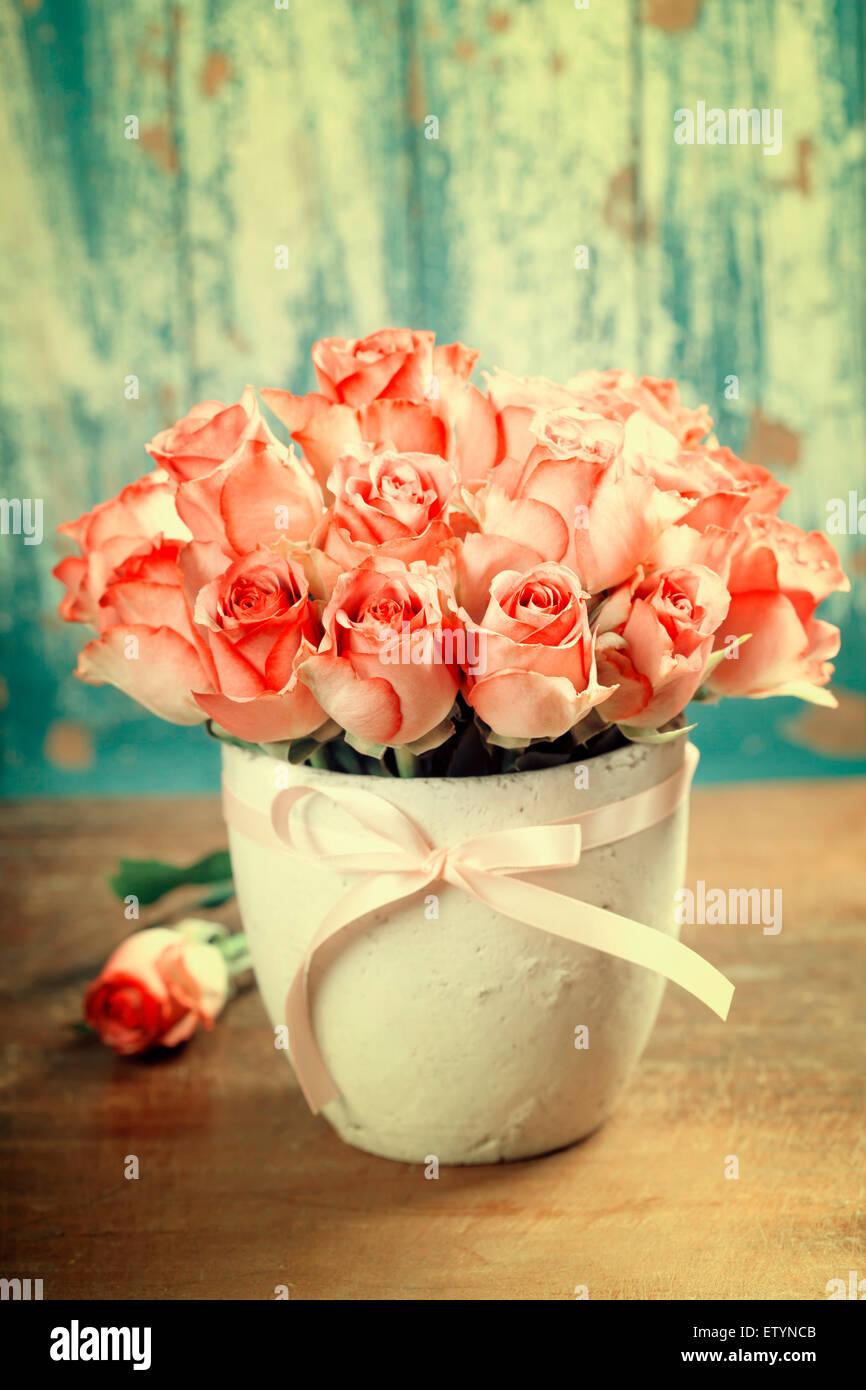 Roses roses dans un pot sur fond bleu Photo Stock