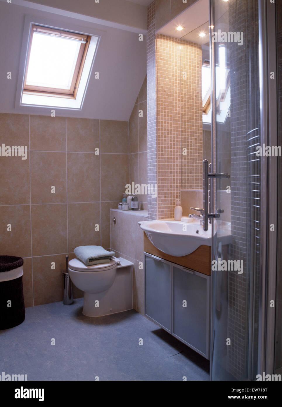 Fenetre Velux Au Dessus De Toilettes Dans Salle De Bains