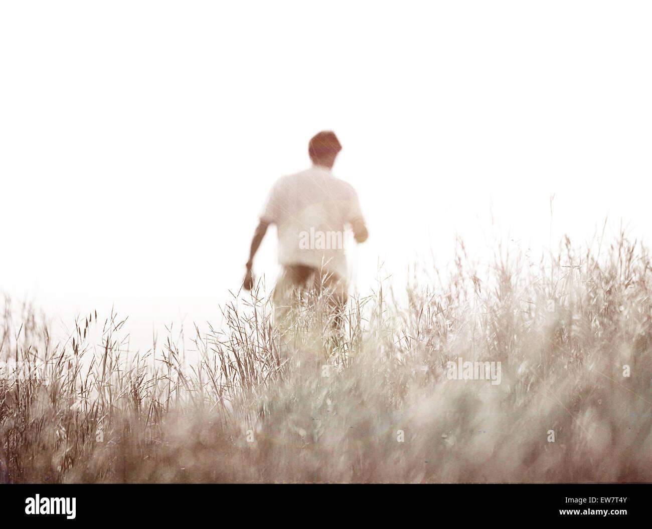 Vue arrière d'un homme dans un champ Photo Stock