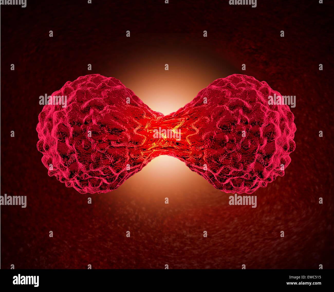 Cancer cell division concept comme un cycle cellulaire microscopique de la réplication ou de la division des cellules cancéreuses malignes dans le corps humain en tant que professionnel de la santé et de l'oncologie médicale dangereuse pour symbole la croissance tumorale. Banque D'Images