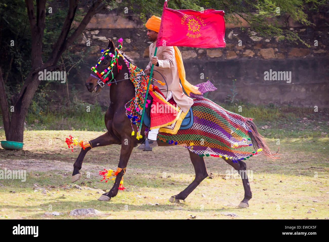Roulement de drapeau cavalier sur un cheval baie richement décorées. L'Inde Photo Stock