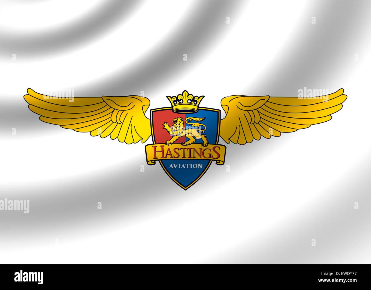 Icône logo aviation hastings symbole du drapeau emblème sign Photo Stock