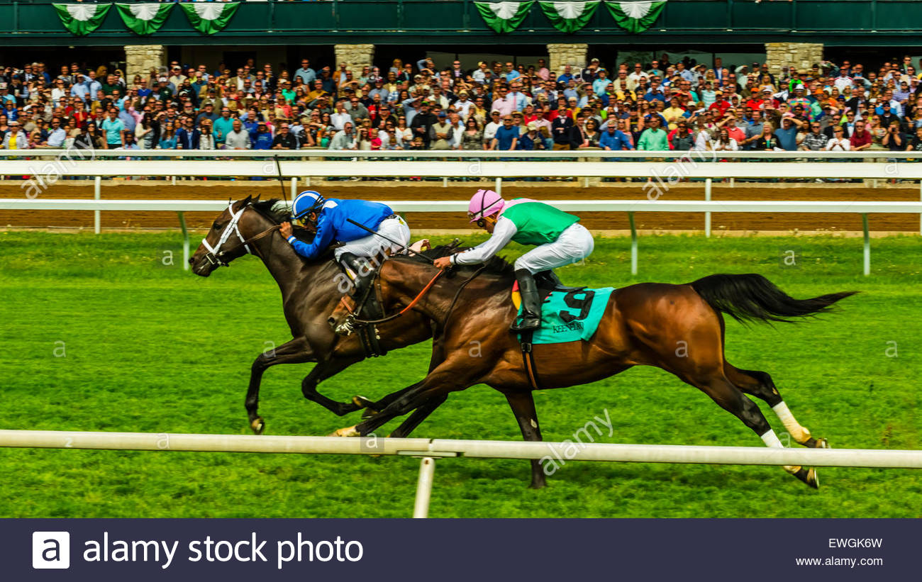 Les courses de chevaux sur la piste de gazon à Keeneland Hippodrome, Lexington, Kentucky USA. Photo Stock