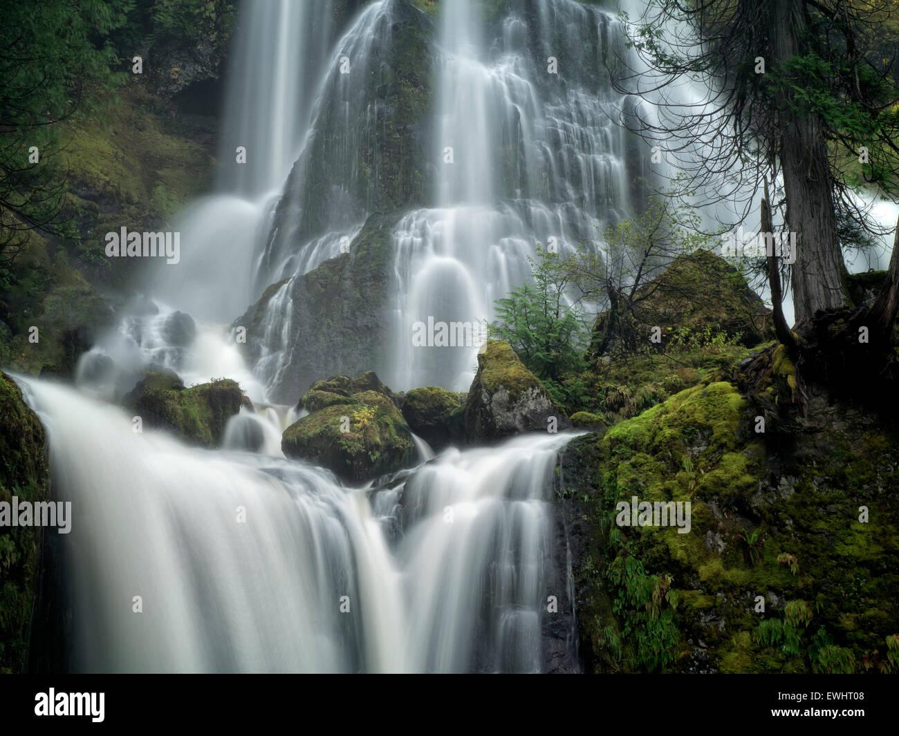 Falls Creek Falls, Washington. Banque D'Images