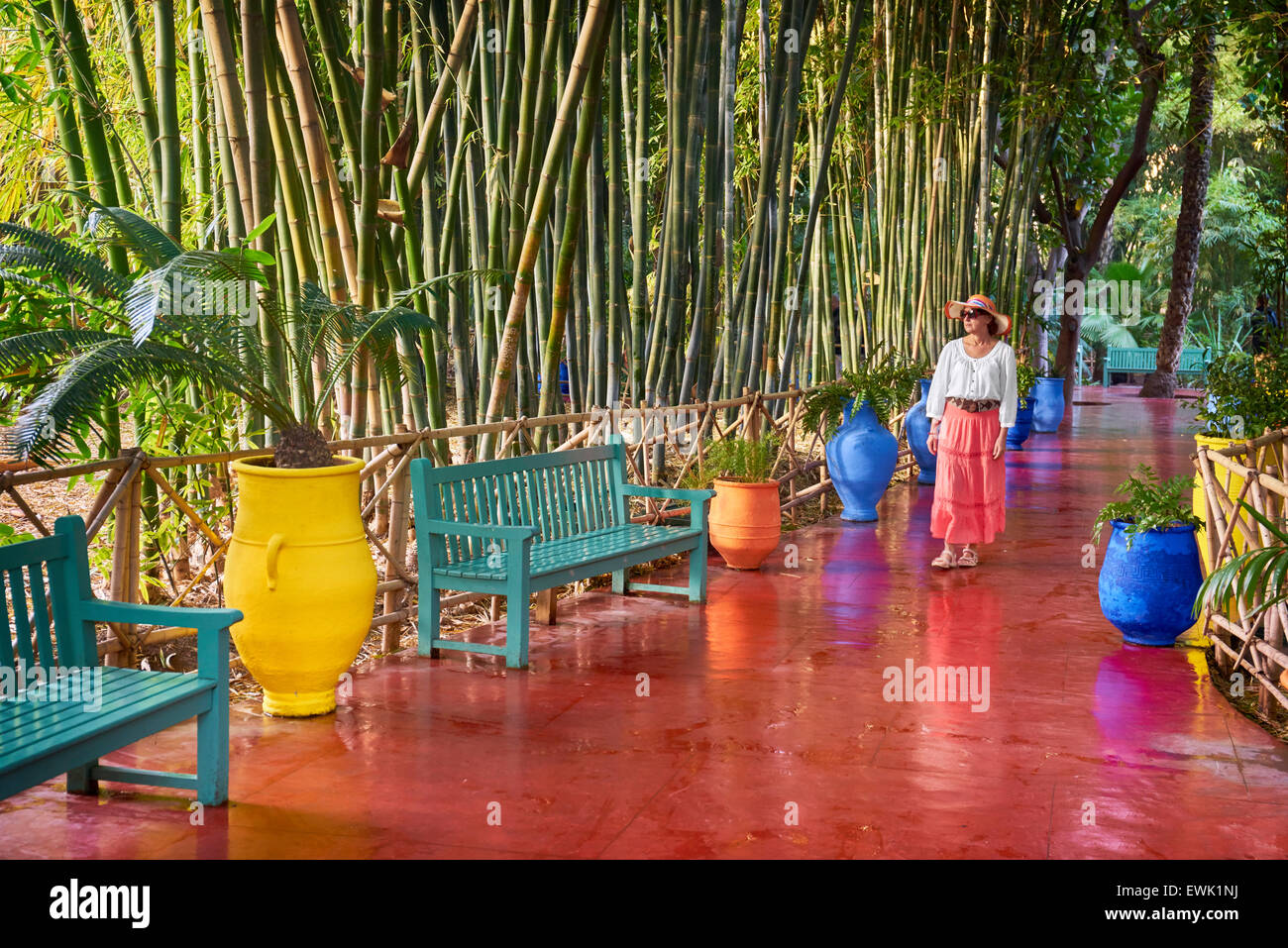 Jardin Jardin Majorelle Marrakech Maroc Afrique Banque D Images