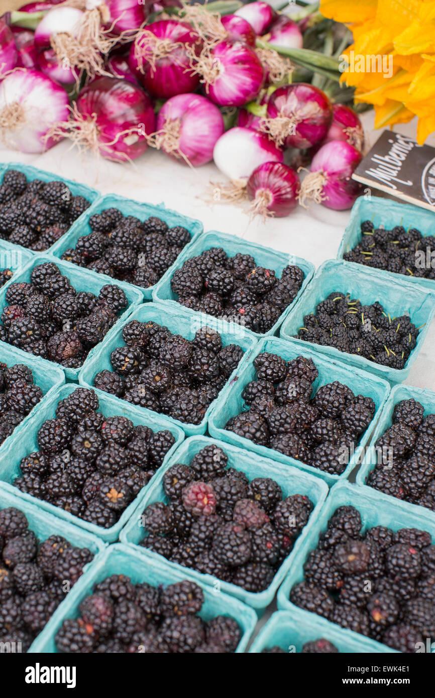 Mûres et autres fruits de saison, oignons rouges et squash blossoms à Sébastopol Farmer's Market, Photo Stock