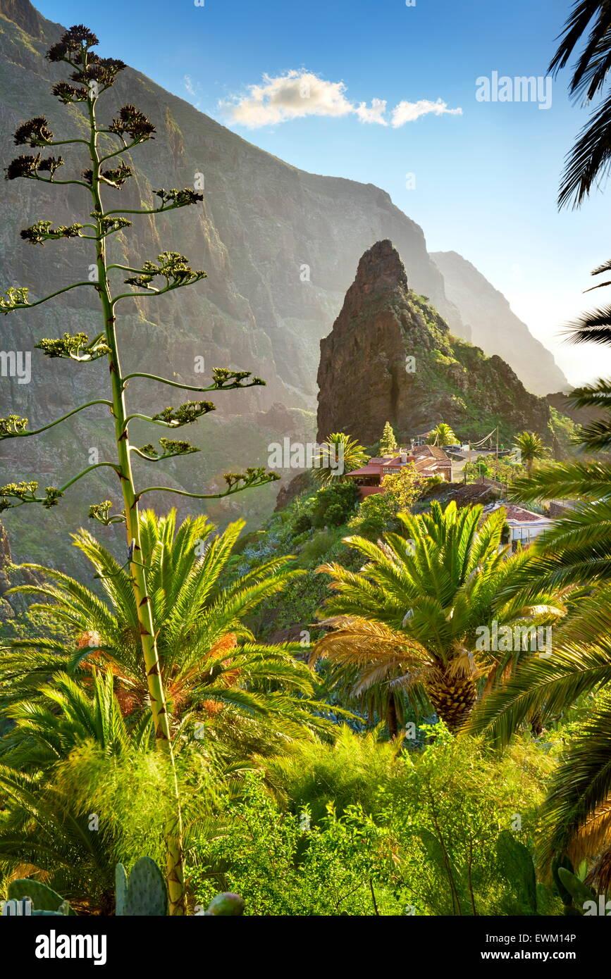 Village de Masca avec sa caractéristique Pinnacle dans le centre, Tenerife, Îles Canaries Photo Stock