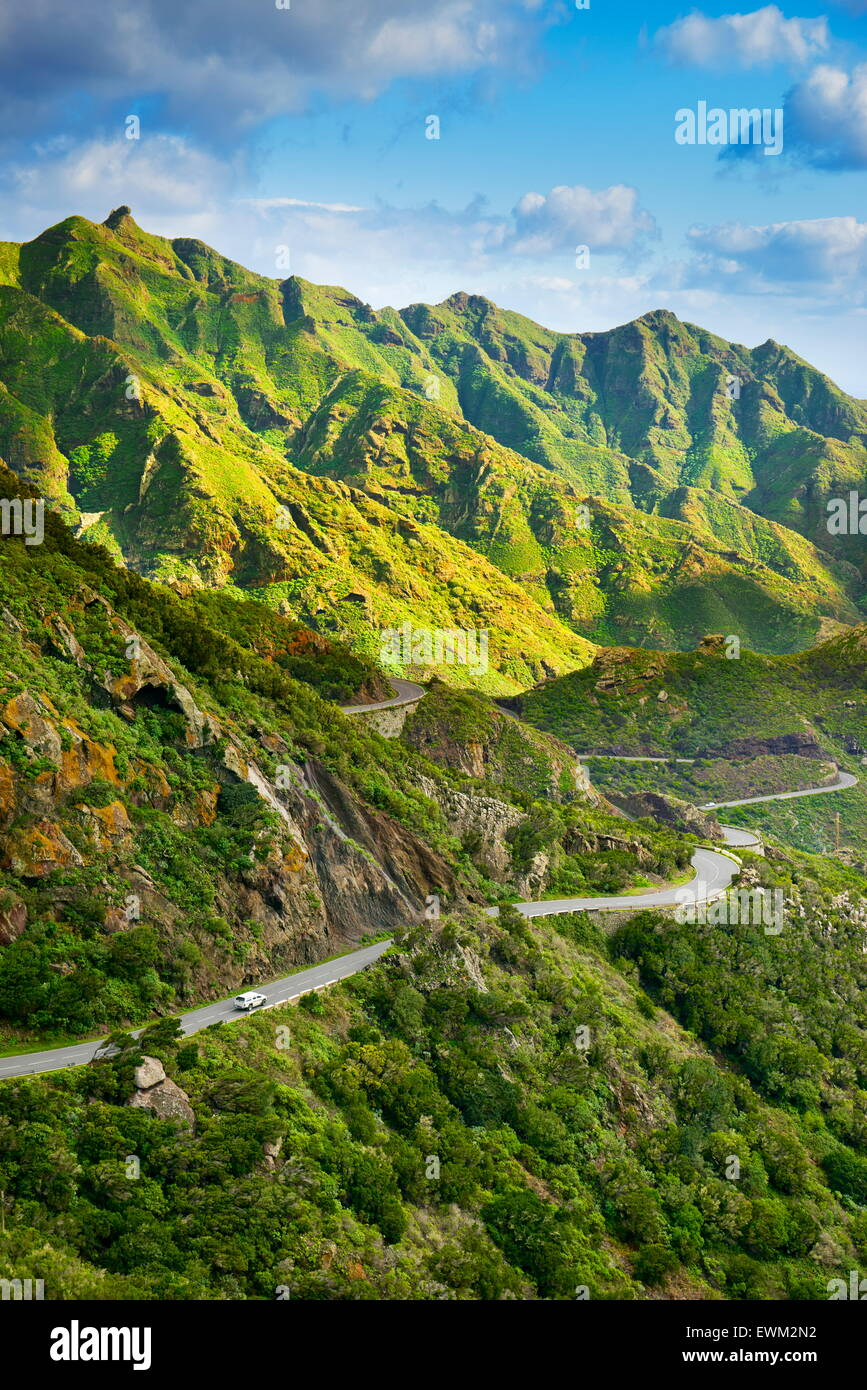 Parc Rural d'Anaga, Tenerife, Canaries, Espagne Photo Stock