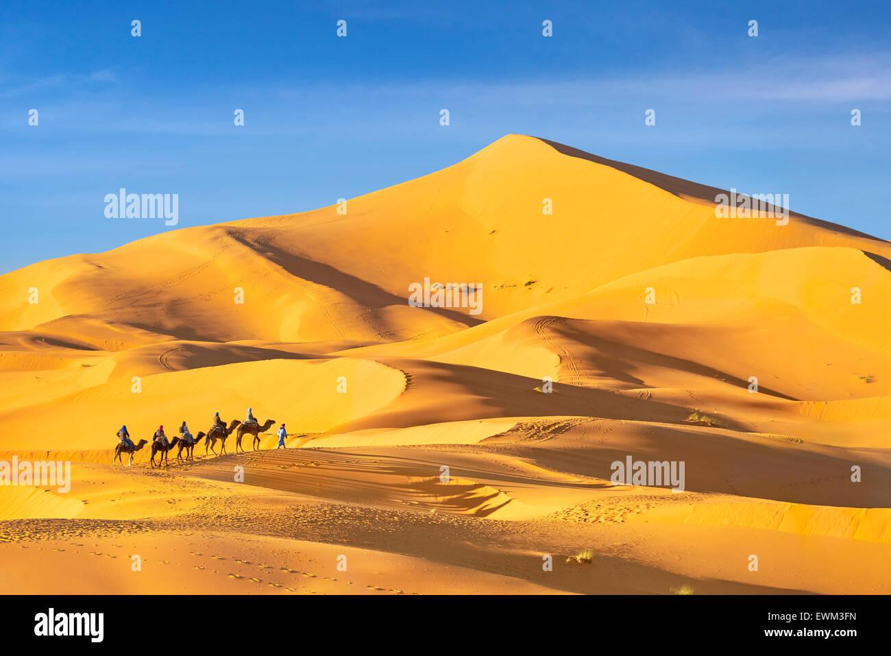 Les touristes monter sur des chameaux, désert Erg Chebbi près de Merzouga, Sahara, Maroc Photo Stock