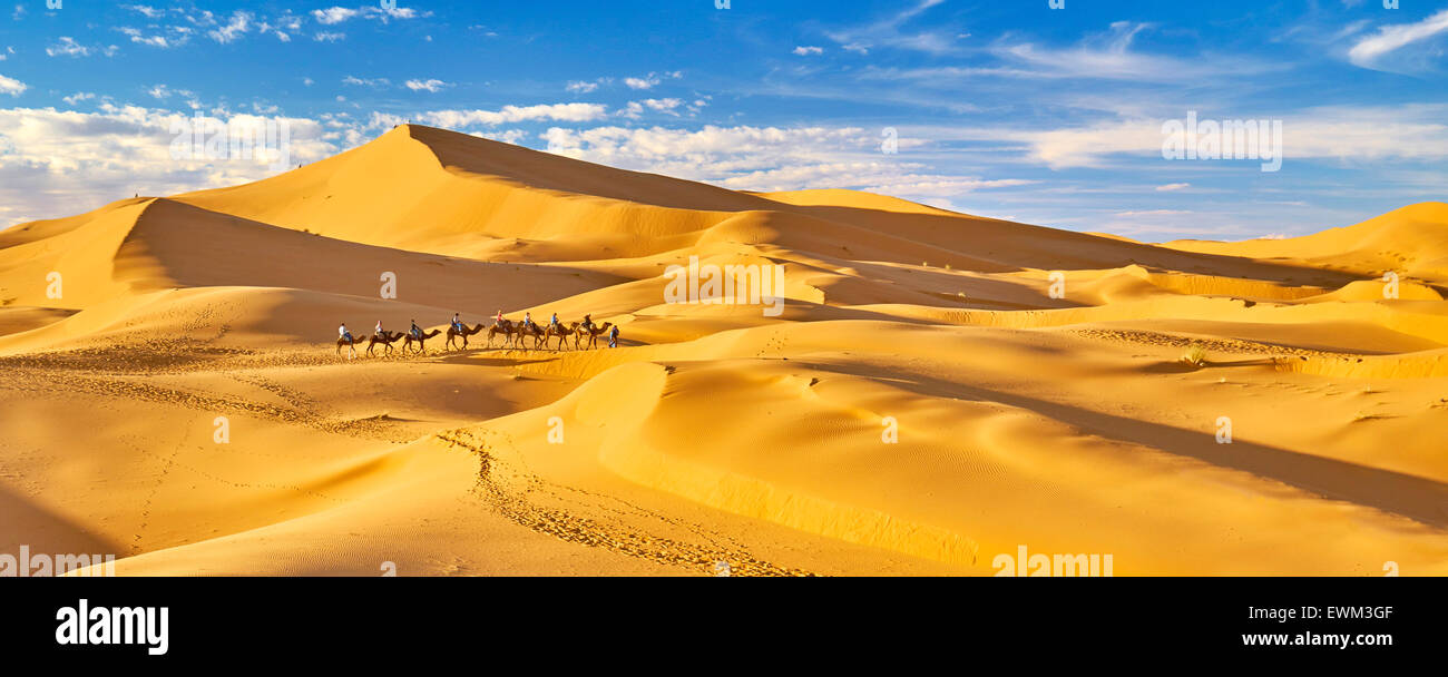 Caravane de chameaux, désert Erg Chebbi près de Merzouga, Sahara, Maroc Photo Stock