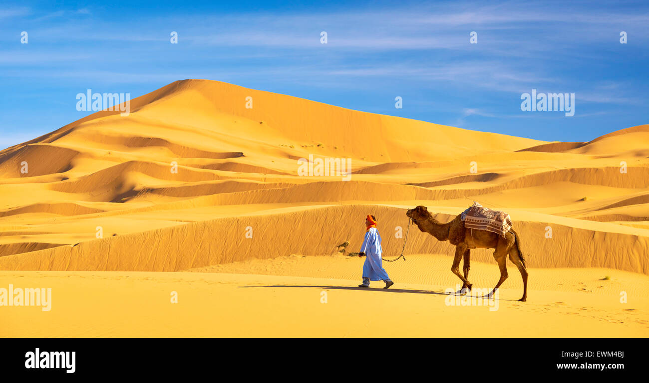 Homme berbère avec son chameau, le désert l'Erg Chebbi près de Merzouga, Sahara, Maroc Banque D'Images
