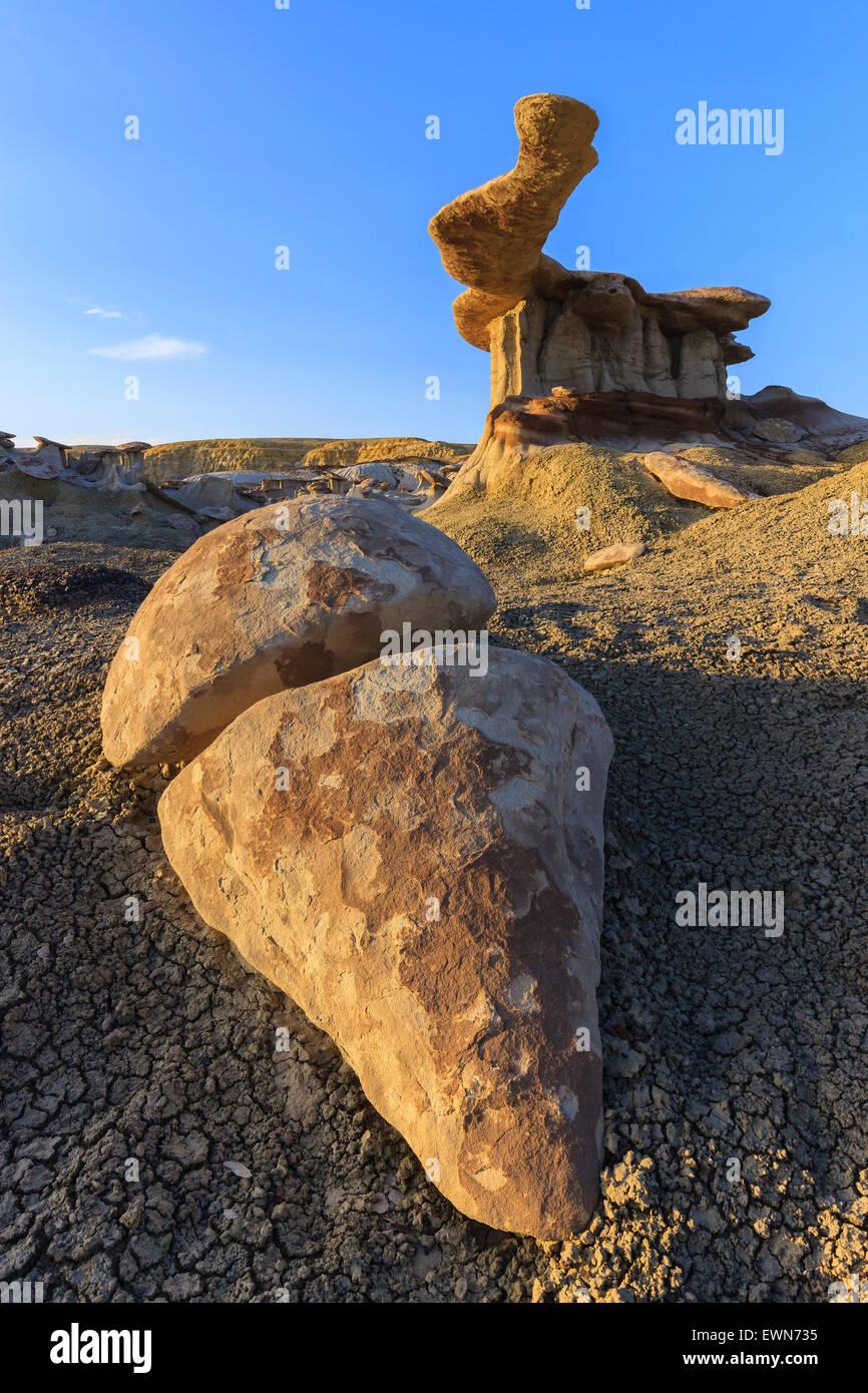 Roi d'ailes dans la Bisti Wilderness, New Mexico, USA Photo Stock