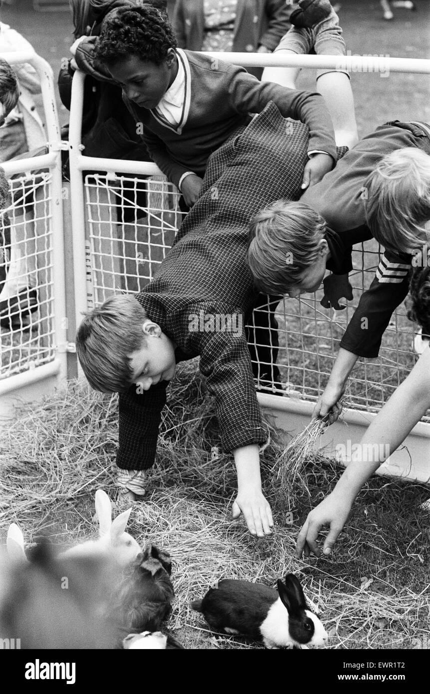 Les premiers animaux domestiques voyageant Corner ouvre à Finsbury Park. Il est organisé par le conseil Photo Stock