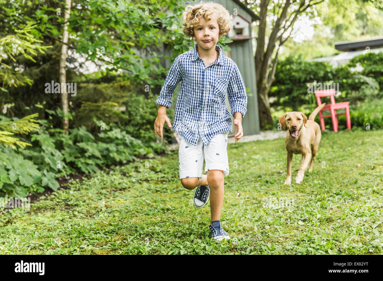 Boy running with dog in garden Photo Stock