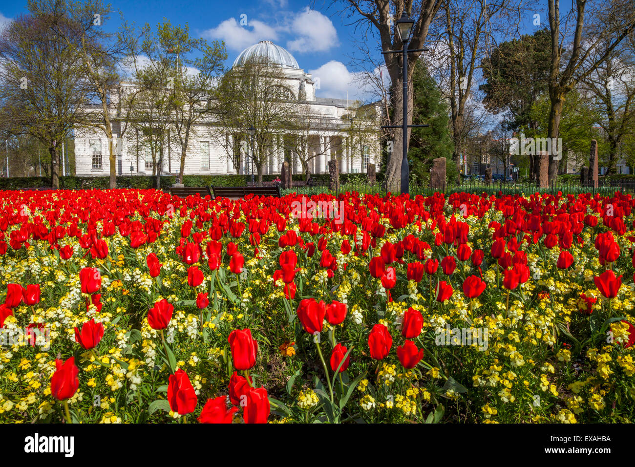 Le National Museum of Wales, Cardiff, Pays de Galles, Royaume-Uni, Europe Photo Stock