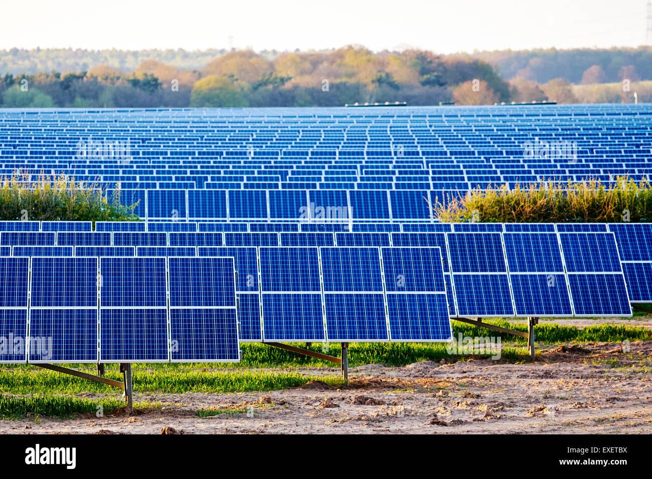 Vue d'une usine de production d'électricité solaire dans un fileld en Angleterre Banque D'Images