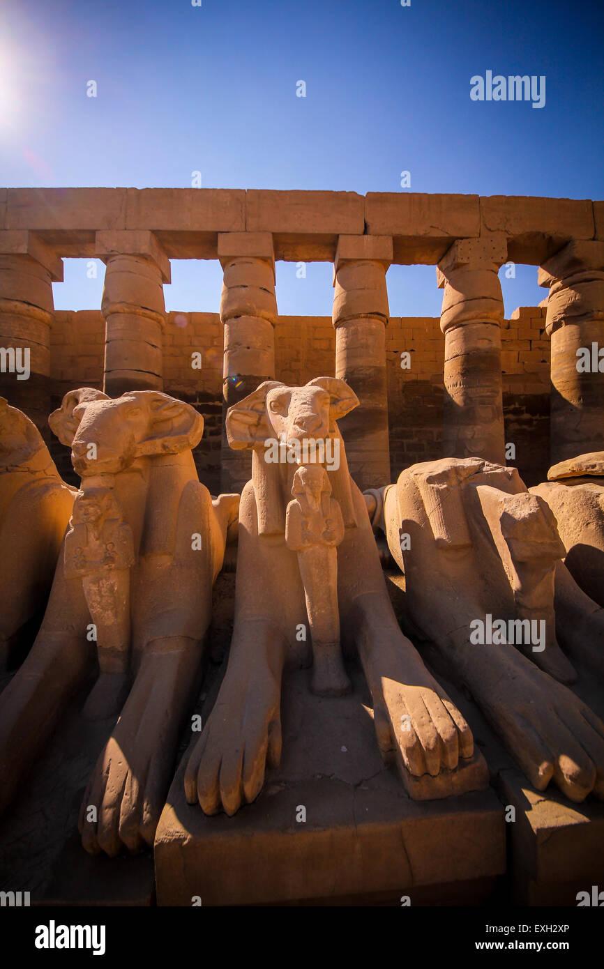 Temple de Karnak, rangée de sphinx tête Ram, Luxor, Egypte Photo Stock